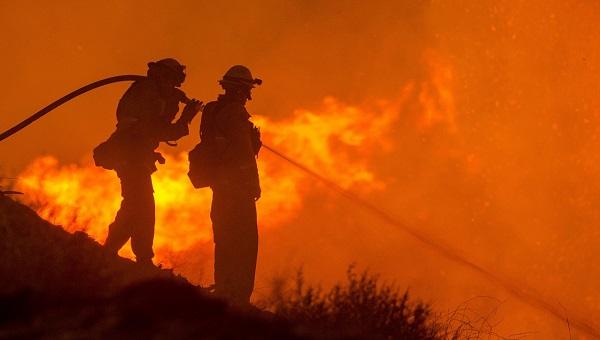 Brandhilfe in Organisationen
